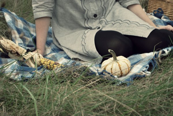 A Harvest Picnic by Dear Creatures