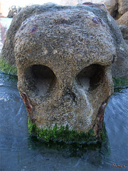 weeping skull on a Marseille's beach (Monch_18) Tags: france beach strange face stone pareidolia skull eau head pierre mort plage bizarre rocher weep tte visage monch crne trange hasard pleurer naturedrawing anthropomorphisme pareidolie