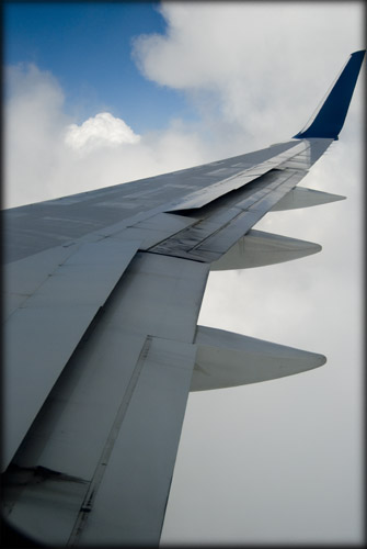Dear Airplane Wing