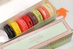 LADUREE Paris Macaron (Yoshio Taka) Tags: japan french dessert tokyo ginza asia sweets 日本 東京 銀座 甜點 macaron 亞洲 ladureeparis 法式甜點 馬卡龍
