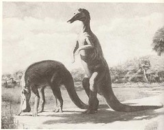 _Tyrannosaurus Rex_ pg.28