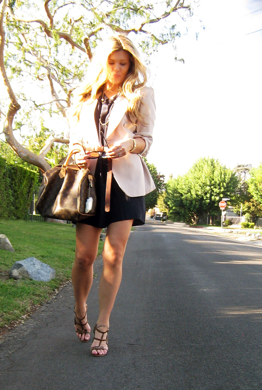 beige and navy and brown+louis vuitton speedy