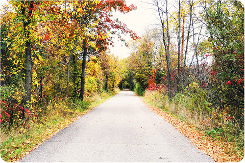 Beaver Island trail