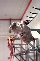pig head (David Lebovitz) Tags: france pig head rungis