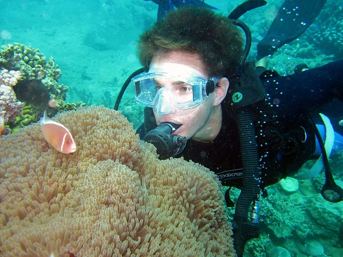 Nha Trang - Diving Hon Mun - Greg Stirring Up Clown Fish Nest