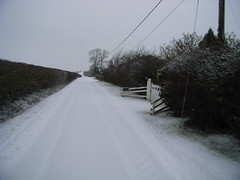 buckland-in-the-snow