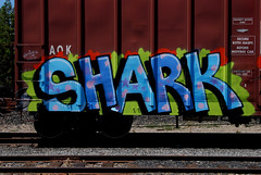 Shark (All Seeing) Tags: gas dna sharky aok kmv