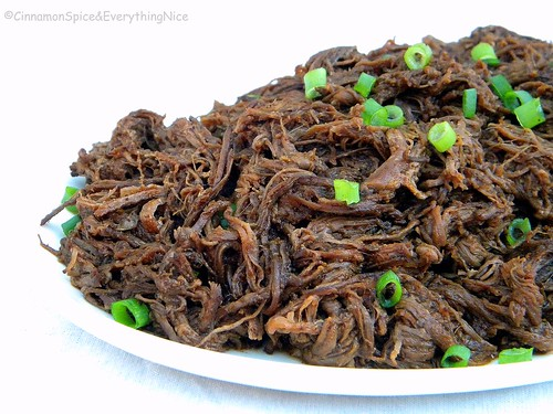 Slow Cooked Shredded Flank Steak