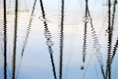 Nice vibrations ... (he_boden) Tags: reflection water evening waves harbour yacht mast