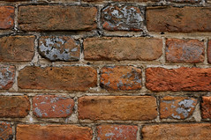Williamsburg Brick Wall 1 (Jim Frazier) Tags: desktop trip travel red summer wallpaper vacation abstract detail building texture lines architecture grid virginia nikon pattern pov background bricks colonial angles july landmark structure symmetry architectural historic foundation mortar clay va williamsburg colonialwilliamsburg americana symmetrical boxes walls traveling minimalism stable powerpoint minimalist centered symetrical solid 2010 rectangles horizontallines repeating fragments stability headon verticallines d90 q2 nationalregisterofhistoricplaces centralperspective capturenx nikoncapturenx nhrp ldoctober ld2010 jimfraziercom 20100717july2010vacation 2010072022williamsburg