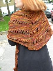 zucca's shawl 008