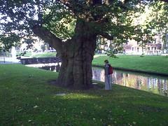 Annie naast de Breytenbachboom (Cajunlady in the library) Tags: bomen rotterdam platanen breytenbach