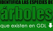 Identifica las especies que existen en Guadalajara