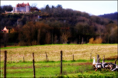 Paysage périgordin (Pemisera) Tags: castle landscape paisaje dordogne château castillo oca castell paisatge oie aquitaine rocchecastelli rocchefariecastellicastleslighthosesbelltowers pemisera pèrigord