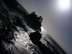 It All Changed (Richelle D Funk) Tags: ocean trees light sunlight green grass landscape island sand rainforest rocks waves bc britishcolumbia foliage vancouverisland tofino ucluelet
