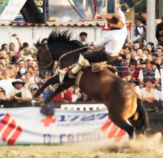 1727 (Eduardo Amorim) Tags: horses horse southamerica caballo uruguay cheval caballos cavalos prado montevideo pferde cavalli cavallo cavalo gauchos pferd hest hevonen chevaux gaucho  amricadosul montevidu hst uruguai gacho  amriquedusud  gachos  sudamrica suramrica amricadelsur  sdamerika jineteada   americadelsud gineteada  americameridionale semanacriolla semanacriolladelprado eduardoamorim iayayam yamaiay semanacriolladelprado2010