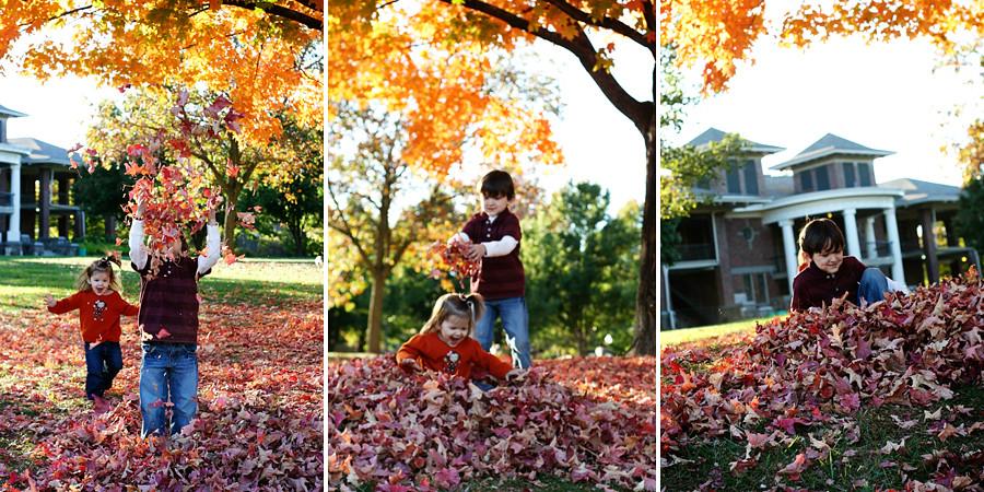 leavesblog