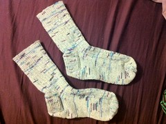 Classic Socks off Feet