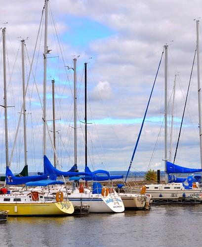 minnesota marina sailing lakecity