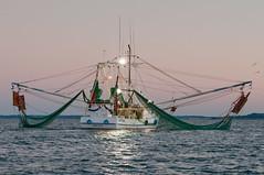 DSC_8406-2 (VanessaK Photography) Tags: sc creek docks fishing sound beaufort shrimping shrimpboats lowcountry dockside portroyal