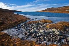 Høgkampen: Høst / Autumn (#6) (Krogen) Tags: oktober nature norway landscape norge natur norwegen noruega scandinavia krogen landskap noorwegen noreg skandinavia oppland synnfjellet nordreland olympuse3 høgkampen