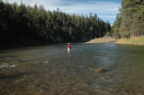 Fly Fishing The Blackfoot River