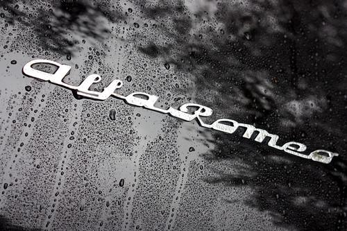 [1/64] 2008 Custom Shelby Mustang GT. [1/64] 2008 Custom Shelby Mustang GT