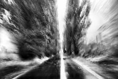 sliced road (nicola tramarin) Tags: longexposure bw italy mono italia delta monochromatic po icm veneto rovigo monocromatico lungaesposizione ariano deltadelpo polesine intentionalcameramovement nicolatramarin