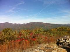 View from Cohutta Overlook