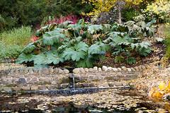 Monteviot House Gardens-22 (davidmunro) Tags: autumn garden scotland dene monteviot