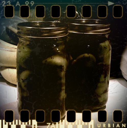 Fermented Green Tomatoes - The Pinhole