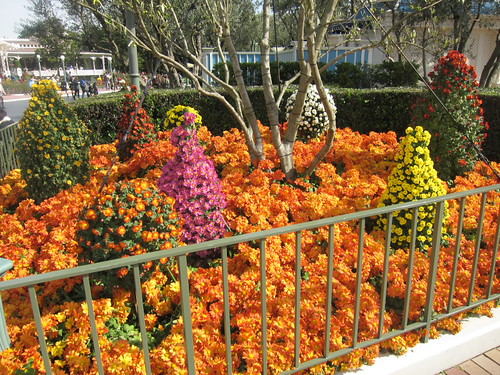 ツリー型をした花の花壇
