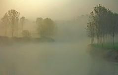 l'ansa (mat56.) Tags: trees nature water misty fog alberi sunrise river landscapes day alba fiume natura campagna aurora nebbia acqua paesaggi atmosfera lombardia lodi pianura ansa lambro lodigiano padana mat56 livraga mygearandmepremium cademazzi