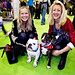 BBC London Radio's JoAnne Good & Anna Webb @ Discover Dogs 2010...