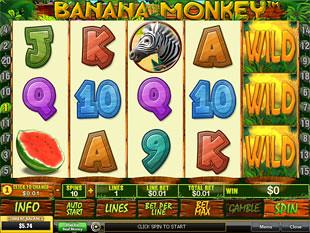 Banana Monkey slot game online review