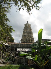 One of the main shrine Vimanams 2