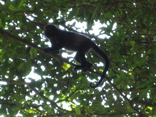 Costa Rica <3