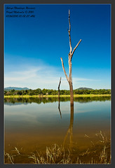 Galoya Namaloya Reservoir (Priyal Mahendre | Sri Lanka) Tags: nature relax interesting natural top tourist experience environment srilanka relaxation exciting touristattractions ampara galoya photosofsrilanka imagesofsrilanka galoyanationalpark priyalmahendre parksoutdoor