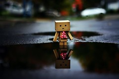 The Reflection. (willycoolpics.) Tags: november cold reflection toy puddle dof action great figure picnik danbo revoltech danboard