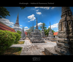 Chedi Jungle - Nakhon Si Thammarat, Thailand (HDR) (farbspiel) Tags: travel vacation holiday history tourism sunshine clouds photoshop logo geotagged thailand religious temple photography amazing ancient nikon worship asia southeastasia cloudy buddhist religion belief wideangle bluesky historic holy journey blended handheld mystical spiritual wat dri hdr highdynamicrange tha watermark hdri blend nakhonsithammarat superwideangle niceweather 10mm postprocessing dynamicrangeincrease ultrawideangle d90 watphramahathat photomatix digitalblending wasserzeichen tonemapped tonemapping watermarking detailenhancer topazadjust topazdenoise klausherrmann topazsoftware sigma1020mmf35exdchsm topazphotoshopbundle geo:lat=841164840 geo:lon=9996596760