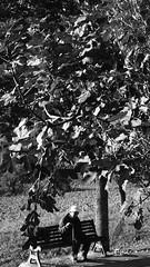 """L'omino III (claudio """"clod"""" giuliani) Tags: bw photo casa strada foto natura campo mura perone bibbia pistola biancoenero cappello fotografo corinaldo divieto uomini panchina passeggiata vigili anziano prete bastone divisa berretto poaint tonaca"""