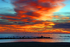 Sunrise colors (grazanna) Tags: sea seagulls colors sunrise mare alba tamron colori 18200 gabbiani colorphotoaward