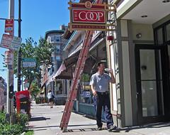 CambridgeUnluckyMan (fotosqrrl) Tags: cambridge urban massachusetts streetphotography harvardsquare ladder massave massachusettsavenue harvardlaw harvardcoop