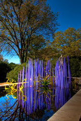 Glassy Water Reflection (Jeff.Hamm.Photography) Tags: sculpture reflection chihuly art water glass garden nikon tn nashville tennessee installation fiori nikkor botanicalgarden dalechihuly hdr lightroom photomatix f3556 18105mm milliefiori cheekwoodbotanicalgarden dishippy