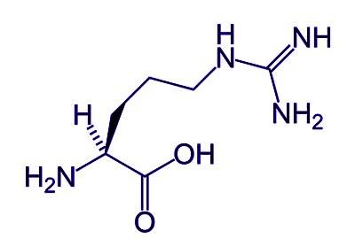 L-精胺酸 opc,精胺酸 opc,l-精胺酸 opc,arginine精胺酸 opc,l-arginine精胺酸 opc,精胺酸功效 opc,天然胺基酸 opc,左旋精胺酸 l-arginine opc,左旋精胺酸產品 opc,左旋精氨酸 l-arginine opc,左旋精氨酸 opc,l-arginine精氨酸 opc,l-精氨酸 opc,保健食品 opc,機能性食品 opc,營養食品 opc,有機食品 opc,天然食品 opc,松樹皮 opc,松樹皮萃取物 opc,松樹皮萃取 opc,法國松樹皮 opc,法國海岸松樹皮 opc,松樹皮功效 opc,opc 松樹皮,松樹皮多酚 opc,松樹皮抗癌 opc,松樹皮粹取物 opc,海岸松樹皮 opc,松樹皮抽出物 opc,濱海松樹皮 opc,松樹皮粹取 opc,松樹皮多酚 opc,碧蘿芷 opc,法國松樹皮多酚opc,Pycnogenol, 濱松 opc,法國濱海松樹皮OPC, 法國濱松萃取 opc, 法國濱松樹皮 opc,前花青素opcs,洛神花 opc,洛神花萼 opc,法國洛神花萼 opc,洛神花萼萃取物 opc,洛神花萼功效 opc,洛神花功效 opc,玫瑰花瓣 opc, 玫瑰花瓣萃取物 opc,玫瑰萃取物 opc,玫瑰花瓣抽取物 opc,玫瑰萃取opc,玫瑰萃取液 opc,玫瑰治過敏 opc,玫瑰抗過敏 opc,日本玫瑰花瓣 opc,專利玫瑰花瓣萃取液 opc,玫瑰花瓣抽取物 opc,玫瑰日本抗過敏專利 opc,玫瑰花瓣精華 opc, 高濃度玫瑰多酚(polyphenol) opc,日本專利玫瑰花瓣 opc,紅石榴 opc,紅石榴多酚 opc,紅石榴提取物 opc, 紅石榴萃取 opc, 紅石榴雌激素 opc,紅石榴天然雌激素 opc,紅石榴功效 opc, 紅石榴水果 opc, 紅石榴精華 opc, 紅石榴精華 opc, 紅石榴膠囊 opc, Opc,opcs,馨舞極opc,松樹皮opc水嫩亮白膠囊,松樹皮opc膠囊,抗氧化 opc,抗老化 opc,美白錠 opc,吃的保養品 opc,花青素功效,前花青素,初花青素,花青素結構,花青素眼睛,花青素測定,花青素萃取,花青素含量,花青素水果,花青素介紹,原花青素,花青素的結構式,前花青素,花青素葡萄籽,花青素含量測定,花青素食物,藍莓花青素,花青素 英文,花青素分子量,花青素實驗,花青素 anthocyanins,花青素,花青素的功用,花青素 opc,花青素 anthocyanin,花青素功能,花青素測定,花青素結構,花青素顏色,花青素 酸鹼,花青素 抗氧化,花青素產品,花青素,opc 花青素,花青素 ph,opc 前花青素,花青素 前花青素
