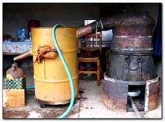 Rakitzo (distillery) (Eirini Papadaki) Tags: ceramic spirit vessel greece grapes copper distillery cyclades naxos fermentation raki distiller distillation apeiranthos laini tsipouro kalymnios azalas pomace φωτιά παράδοση strofilia ancienttradition τσίπουρο kazani tsikoudia σταφύλια ρακί καζάνι ελλάσ νάξοσ κυκλάδεσ απείρανθοσ κεραμικό χάλκινο pouma kalimnios τσικουδιά noulas αλκοολ alcoholcontent απόσταξη mustresidue rakitzo αζαλάσ στροφιλιά ρακιτζό χατζάνια χατζανέματα λαινι μπιρμπινίτσα πούμα νουλάσ michalisprotonotarios καλυμνιόσ μιχάλησπρωτονοτάριοσ birbinitsa ζύμωση hatzania hatzanemata