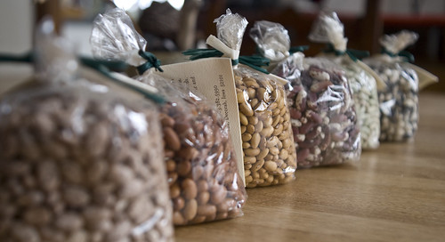 Bean Sampler for Seed Savers