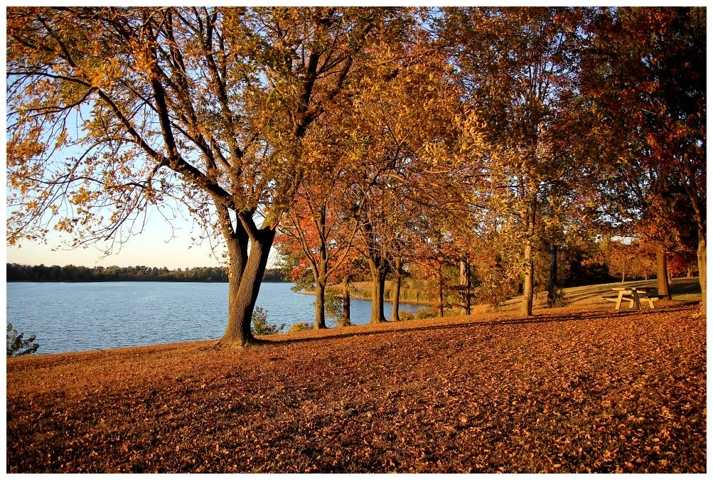 Rend Lake, IL 3