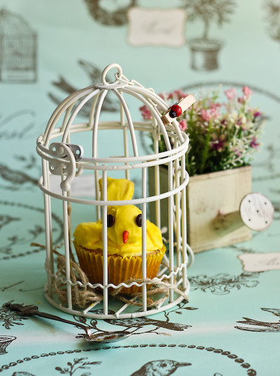 canary_cupcakes