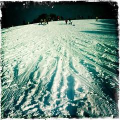 tracks of my fears (art crimes) Tags: winter people snow ice washington hill tracks footprints sledging sledges glebepark slede